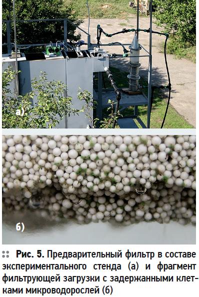 Влияние фитопланктона на формирование качества воды и методы его удаления. Часть 2. 11/2020. Фото 10