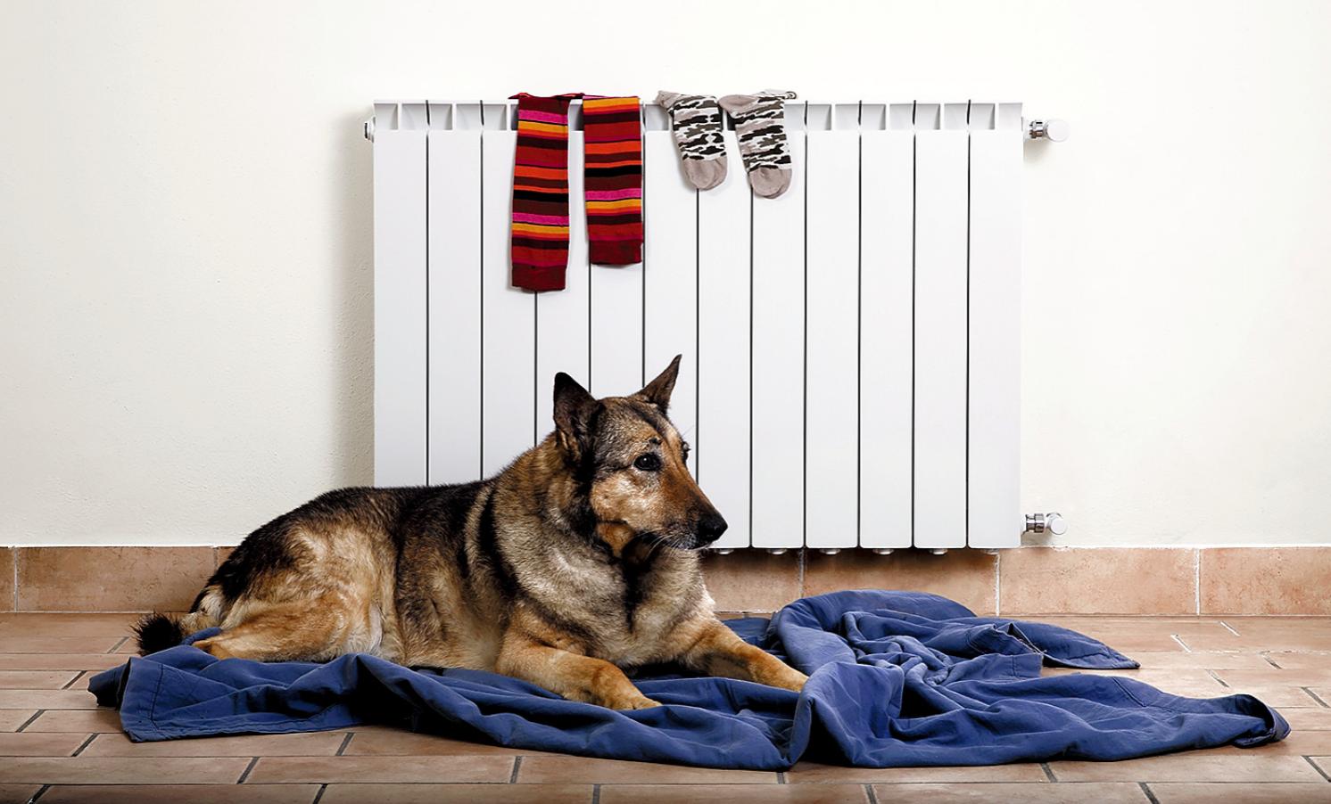 Сертификация радиаторов обновит рынок отопительных приборов. 7/2018. Фото 1