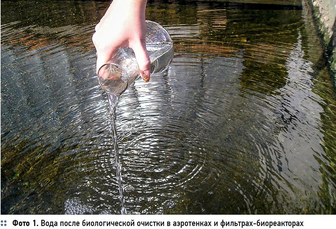 Гидробиологические аспекты процесса биологической очистки с нитрификацией и симультанной денитрификацией (БНЧСД). 2/2020. Фото 3