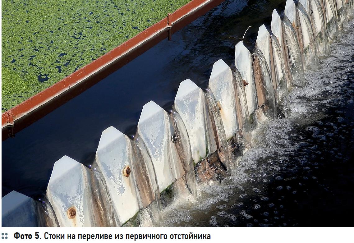 Гидробиологические аспекты процесса биологической очистки с нитрификацией и симультанной денитрификацией (БНЧСД). 2/2020. Фото 4
