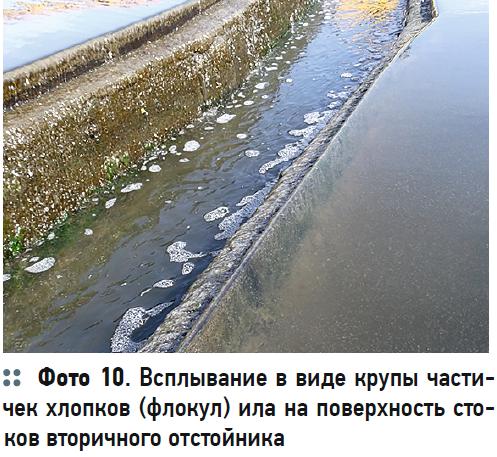 Гидробиологические аспекты процесса биологической очистки с нитрификацией и симультанной денитрификацией (БНЧСД). 2/2020. Фото 7