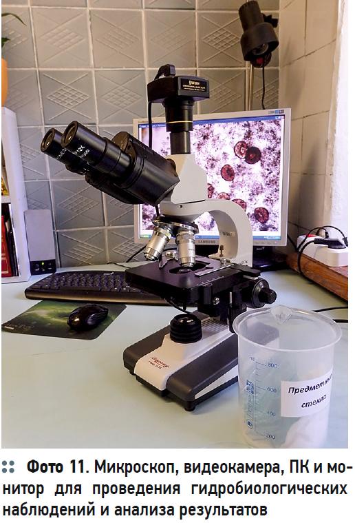 Гидробиологические аспекты процесса биологической очистки с нитрификацией и симультанной денитрификацией (БНЧСД). 2/2020. Фото 8