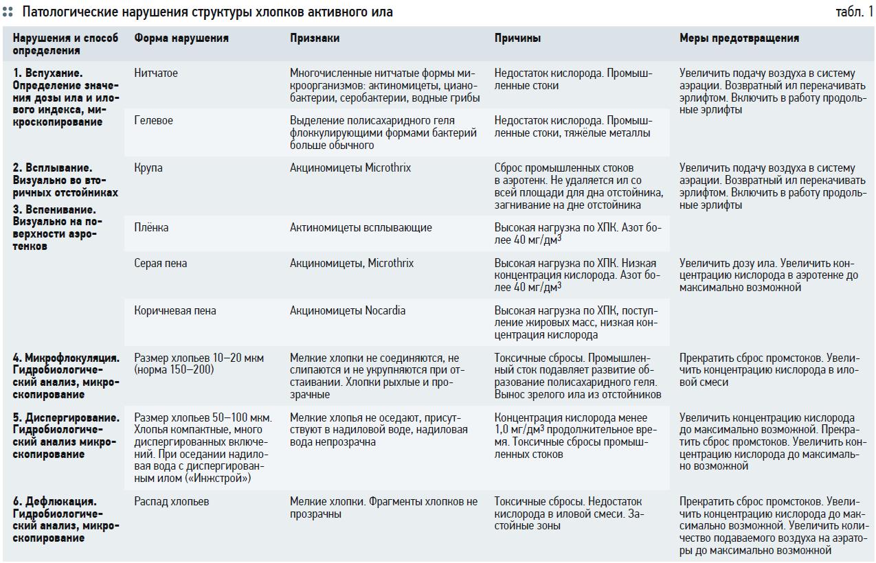 Гидробиологические аспекты процесса биологической очистки с нитрификацией и симультанной денитрификацией (БНЧСД). 2/2020. Фото 10