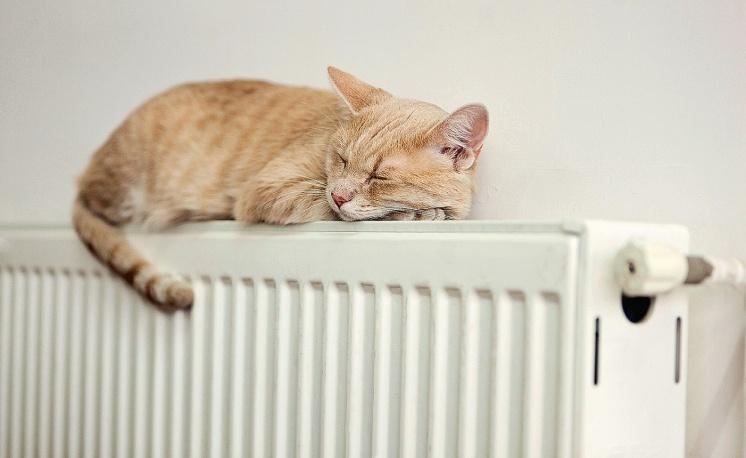 Отопление: что лучше - одна или две трубы?. 10/2014. Фото 1