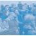 VI ежегодная конференция Группы «АМКОРОСА»