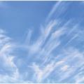 Оценка параметров теплообмена в роторных регенераторах СОВ