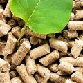 Резервные твердотопливные изделия: композиты на основе биомассы, торфа и биоугля