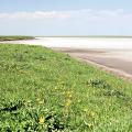 Возобновляемая энергетика в Калмыкии: опыт, проблемы и перспективы региона