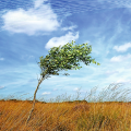 Ветроэнергетическое оборудование и комплексы гарантированного электроснабжения малой мощности