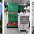 Климатика для фермы от Adrian Group