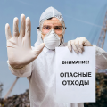 Практика и опыт экологических проектов в России