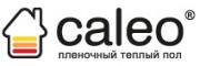 Логотип Калео Рус