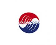 Логотип АМКОРОСА ГРУППА