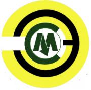 Логотип ООО ЭСМ