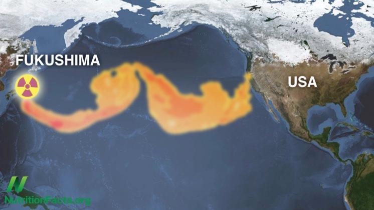 Фукусима и США, поддержка