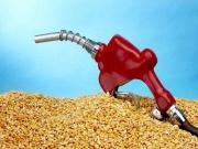 Альтернативный бензин в США Фото №1