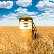 Котельная на биотопливе введена в эксплуатацию Фото №1
