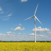 Wind park Snowtown  Фото №1