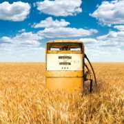Turnover of Biofuel in Russia to Increase Фото №1