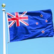Развитие интеллектуальных сетей в Новой Зеландии  Фото №1