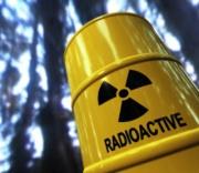 Референдум в Болгарии о ядерной энергии Фото №2