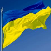 Развитие производства пеллет в Украине Фото №1