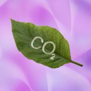 Способы снижения выбросов парниковых газов  Фото №1