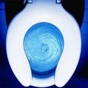 В ЕС решили стандартизировать объем воды для смыва в туалете