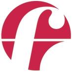 Forte T & P GmbH об итогах 2013 года