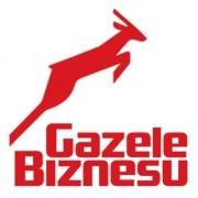 Компания VTS номинирована в рейтинге «Газели Бизнеса».
