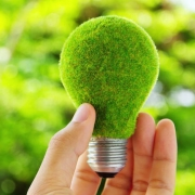 WWF построит зеленый офис в Москве