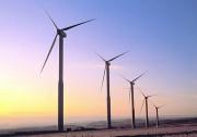 Ветровая электроэнергия стала на 43% дешевле