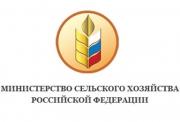 Министерствj сельского хозяйства РФ поддержало проекты НП «Техплатформа «Биоэнергетика» Фото №1