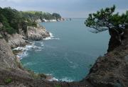 Япония предложила Приморью перейти на альтернативные источники энергии Фото №1