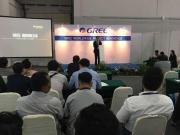 Ключевые технологии GREE покорили выставку в Индонезии Фото №3