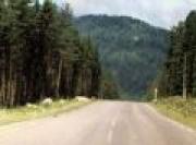 Дорожное покрытие очистит загрязненный воздух