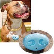 Выпущен ионизатор воздуха для собак