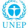 Доклад ООН: 2021 год - решающий для планеты