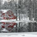 Три зимних кошмара домовладельца