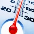 Ученые заявили, что люди полнеют из-за центрального отопления
