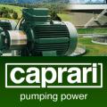 Партнеры АДЛ посетили производство Caprari