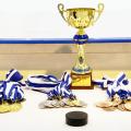 Компания BAXI S.p.A. стала спонсором детского турнира по хоккею с шайбой