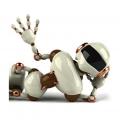 Глобальная роботизация производственных площадок MDV