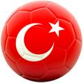 Турция откроет свой первый стадион, работающий на энергии солнца