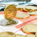 Инвестиции Viessmann в ОЭЗ составили почти 4%
