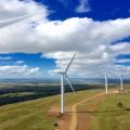 Российское законодательство по поддержке ветроэнергетики названо лучшим в мире