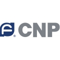 CNP на рынке Казахстана
