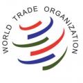 Китай борется в ВТО против налоговых пошлин США на оборудование солнечной энергетики