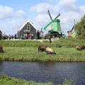 Экскурсия на производственный комплекс Flamco в Голландию